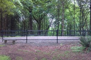 440 Style Fence In Wooded Area - West Linn
